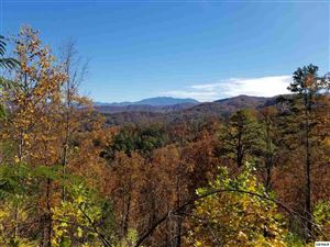 Photo of Lot 52 Windmere Way Cascades Upon Cove, Sevierville, TN 37862 (MLS # 219666)