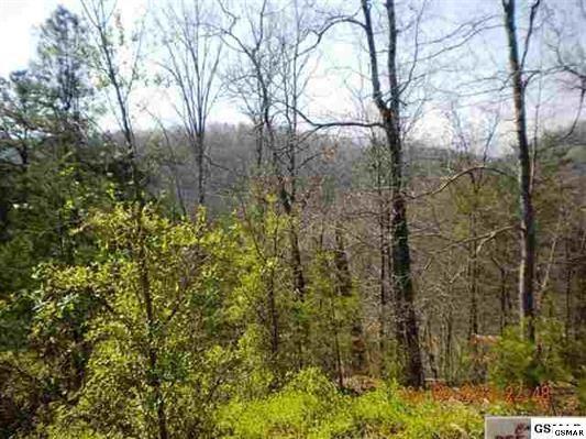 Photo of Lot 1AF Bassett Way Fox Run, Sevierville, TN 37876 (MLS # 245721)