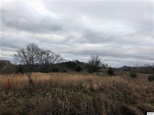 Photo of Lot 33 Murrell Meadows Dr, Sevierville, TN 37876 (MLS # 219741)