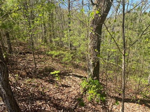 Photo of lot 13 Mountain Dreams Way, Sevierville, TN 37876 (MLS # 241793)