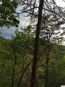 Photo of Lot 73 Parkside Retreat Way, Sevierville, TN 37862 (MLS # 219836)