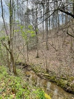 Photo of Lot 4 Rule Way, Sevierville, TN 37876 (MLS # 241851)
