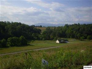 Photo of Lot 18 English Fields Dr., Newport, TN 37821 (MLS # 220852)