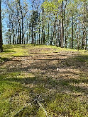 Photo of 1860 King Estates Rd, Sevierville, TN 37876 (MLS # 241864)