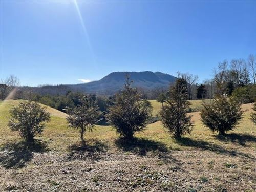 Photo of Lot 3 Willow Wood Dr, Sevierville, TN 37876 (MLS # 240972)