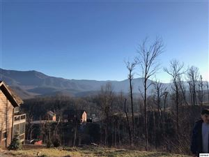 Photo of 814 Chalet Village Boulevard, Gatlinburg, TN 37738-4408 (MLS # 223982)