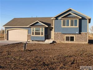 Photo of 4029 E 66 N, RIGBY, ID 83442 (MLS # 2126002)