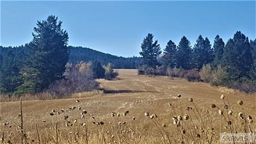 Photo of TBD Snake River Road, SWAN VALLEY, ID 83449 (MLS # 2126035)