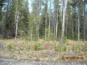 Photo of 4413 Deer Crest Drive, ISLAND PARK, ID 83429 (MLS # 2126144)