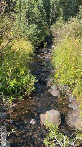 Photo of 4180 Yale Creek Road, ISLAND PARK, ID 83429 (MLS # 2132245)