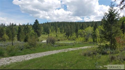 Photo of TBD Snake River Road, SWAN VALLEY, ID 83449 (MLS # 2139347)