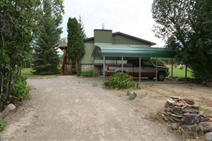 Photo of 176 Valley View Road, CHALLIS, ID 83226 (MLS # 2116647)