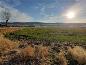 Photo of LOT 9 Monroe Road, SHELLEY, ID 83274 (MLS # 2118805)
