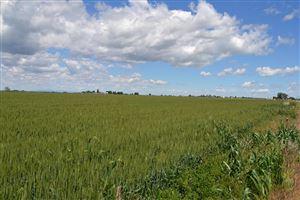 Photo of Lot #6 N Sugar Factory Road, SHELLEY, ID 83274 (MLS # 2115904)