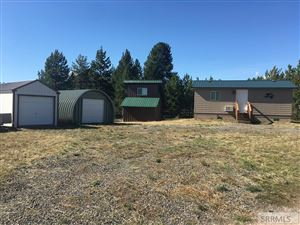 Photo of 3419 Chestnut Drive, ISLAND PARK, ID 83429 (MLS # 2124946)