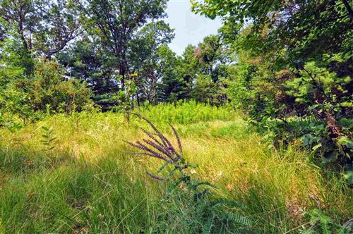 Photo of TBD Overland Tr, Wisconsin Dells, WI 53965 (MLS # 1916053)