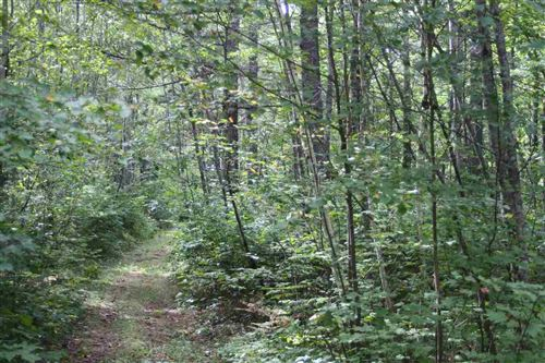 Photo of Lots 6 and 9 Fire Tr, Lac Du Flambeau, WI 54538 (MLS # 1903079)