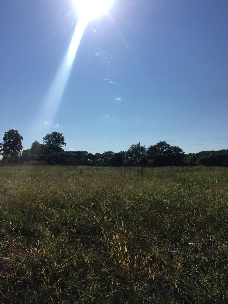 Photo for Lot 1 Wooded Ridge Tr, Cottage Grove, WI 53527 (MLS # 1915089)