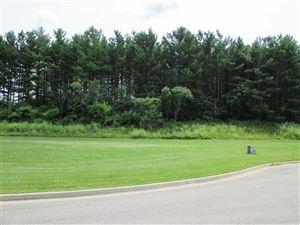 Photo of 987 Pine Ridge Ct, Brownsville, WI 53006 (MLS # 1865101)