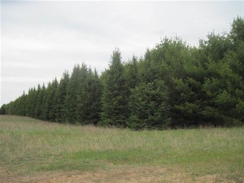 Photo of 3126A State HWY 13, Wisconsin Dells, WI 53965 (MLS # 1916164)