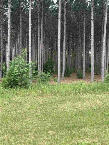 Photo of Lot 24 Brostron Rd, Baraboo, WI 53913 (MLS # 1885256)