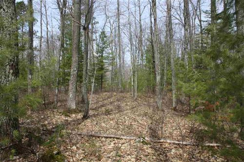 Photo of Lot 9 On American Eagle Ct, Lake Tomahawk, WI 54539 (MLS # 1880278)