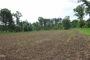 Photo of Cty road B, Wautoma, WI 54930 (MLS # 1861306)