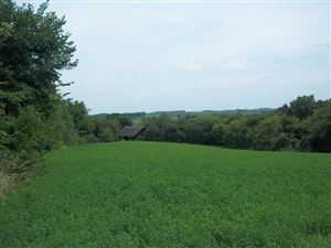 Photo of 17.38 Ac Allen Rd, Browntown, WI 53522 (MLS # 1869310)