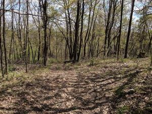 Photo of 0 Dale Rd., Loganville, WI 53943 (MLS # 1858332)