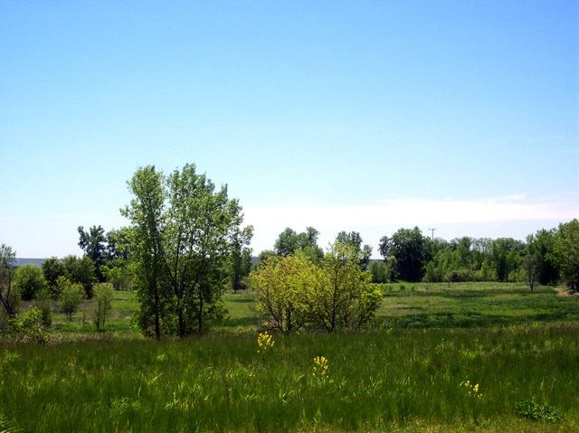 Photo for L131 Autumn Harvest Way, Windsor, WI 53598 (MLS # 1843394)