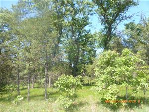 Photo of 3.09 Ac 15th Ave, Arkdale, WI 54613 (MLS # 1872439)