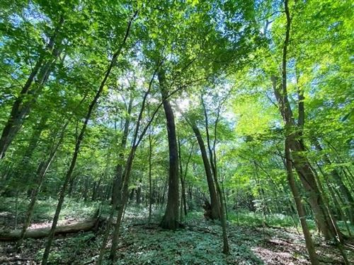 Photo of 10 Acres Observatory Rd, Cross Plains, WI 53528 (MLS # 1911505)