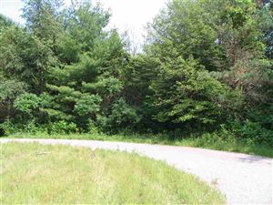 Photo of L12 & L13 Tofson Ct, Wisconsin Dells, WI 53965 (MLS # 1863568)