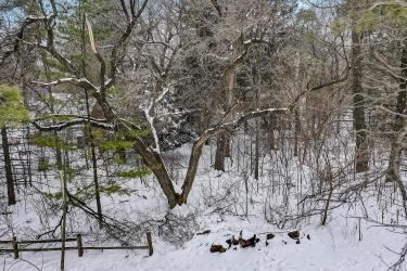 Photo of Lt 3 Lakeview Dr, Cambridge, WI 53523 (MLS # 1900585)