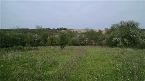 Photo of 59.06 Acres Biggs Rd, Argyle, WI 53504 (MLS # 1876625)