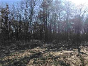 Photo of 16.68 Ac County Road DJ, Juneau, WI 53039 (MLS # 1841645)