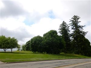 Photo of Michelle Street, Mount Horeb, WI 53572 (MLS # 1736681)