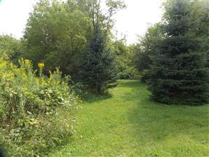 Photo of L2 Henry Rd, Belleville, WI 53508 (MLS # 1867688)
