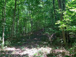 Photo of 10.77 Ac County Road F, Albany, WI 53502 (MLS # 1863730)
