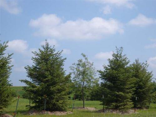 Tiny photo for 3171 Lymans Run, Sun Prairie, WI 53590 (MLS # 1920732)