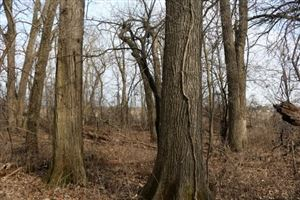 Photo of 50 Ac County Road A, Edgerton, WI 53534 (MLS # 1853820)