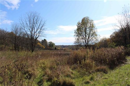 Photo of 10 Ac Meadow Brook Rd, Argyle, WI 53504 (MLS # 1895838)