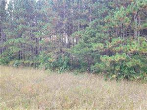 Photo of 2.49 Ac 11th Ave, Wisconsin Dells, WI 53965 (MLS # 1868848)