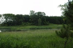 Photo of 35 Ac County Road CM, Pardeeville, WI 53954 (MLS # 1750893)