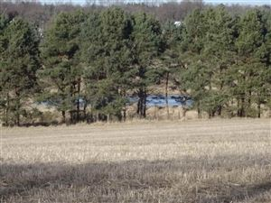 Photo of 5086 Byrne Rd, Fitchburg, WI 53575 (MLS # 1846947)