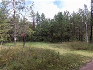 Photo of L1 Badger Ave, Nekoosa, WI 54457 (MLS # 1868950)