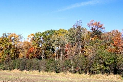 Photo of 14 Ac Hwy 106, Edgerton, WI 53534 (MLS # 1874973)
