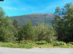 Photo of 0 5th Street, Douglas, AK 99824 (MLS # 19300)