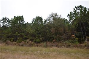 Photo of TBD Hwy 12 Highway, Ragley, LA 70657 (MLS # 185217)