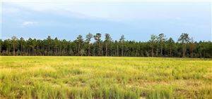 Photo of Midkiff Road, Longville, LA 70652 (MLS # 182291)